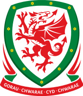 WALES FOOTBALL CLUBS